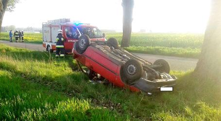 Trwa czarna seria wypadków na drogach