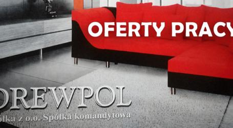 OFERT PRACY DREWPOL