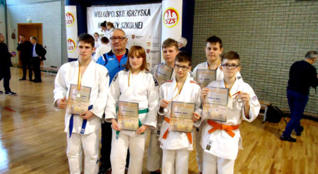 Kolejne udane zawody w judo