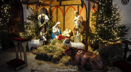 Bożonarodzeniowe szopki