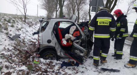 Wypadek w Próchnowie