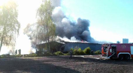 Potężny pożar w Zakrzewie