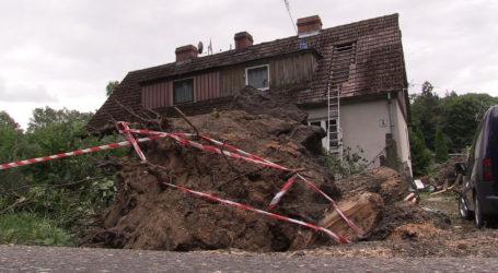 Drzewo spadło na dom