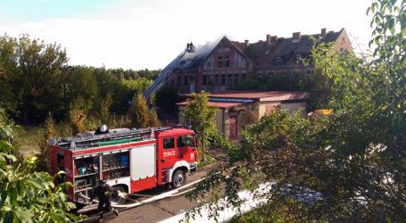 Pożar na Warsztatowej