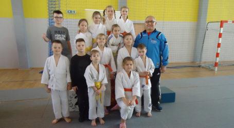Kolejne sukcesy w judo
