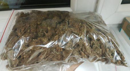 Kilogram marihuany w mieszkaniu 44-latka