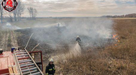 Paliły się trawy koło Białośliwia