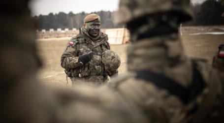 Terytorialsi z Piły i okolic