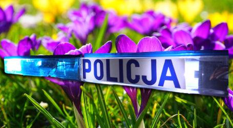 Policja w pierwszy dzień wiosny