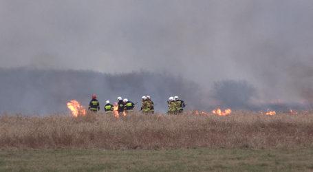 Potężny pożar łąk nadnoteckich