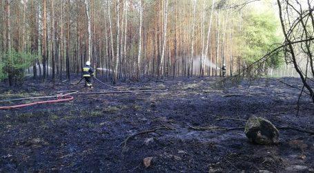 Paliły się lasy pod Piłą