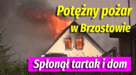 Potężny pożar w Brzostowie – VIDEO