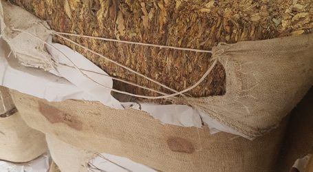 Policja skonfiskowała 1,5 tony lewego tytoniu