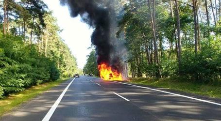 Palił się samochód na krajowej 11