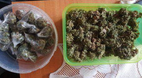Marihuana ukryta w pudełku po żelkach