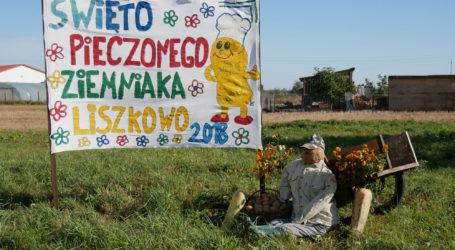 Pyrlandia w Liszkowie