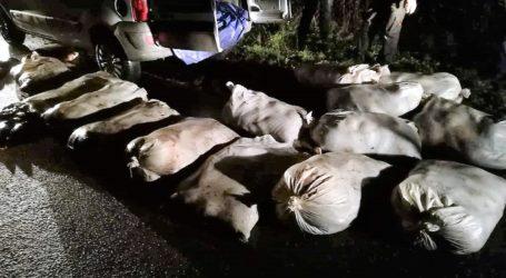 Ukradli 840 kg ryb
