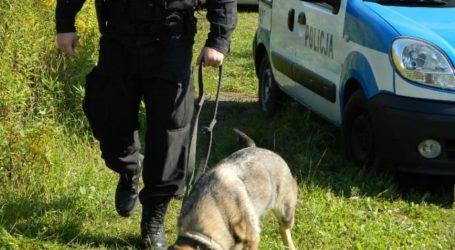 Policjanci odnaleźli dwóch chłopców. 8-latek sam szedł do Tuczna