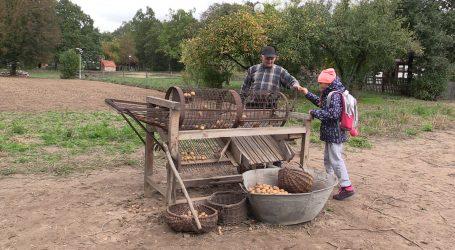 Jesień w polu i zagrodzie